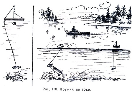 Кружок - снасть для ловли хищной рыбы.