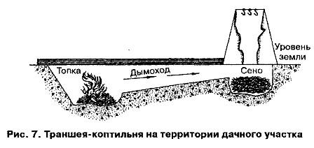 http://okafish.ru/kopt/foto/7.jpg