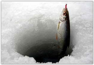 Как ловить зимой плотву, видео.