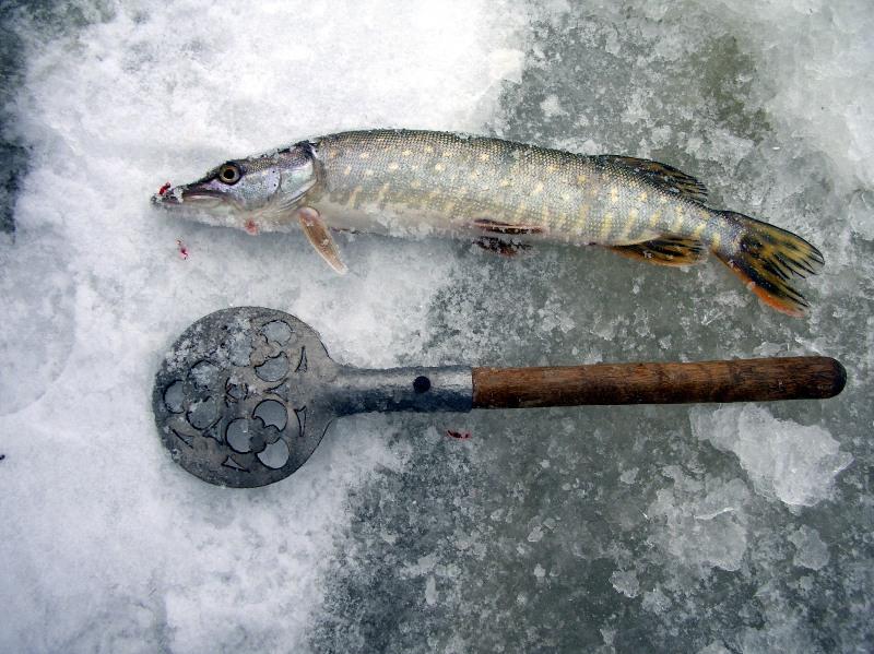 рыбалка на щуку мормышкой