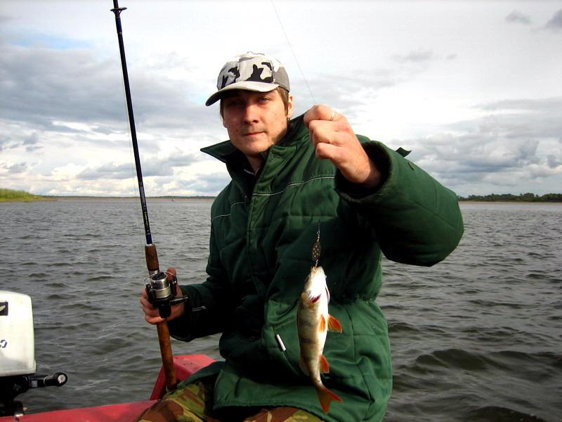все о рыбалке ловить окуня