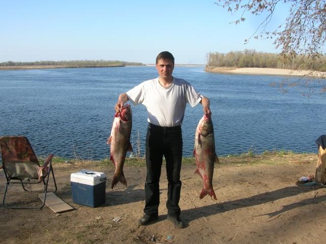 форумы о рыбалке на нижней волге