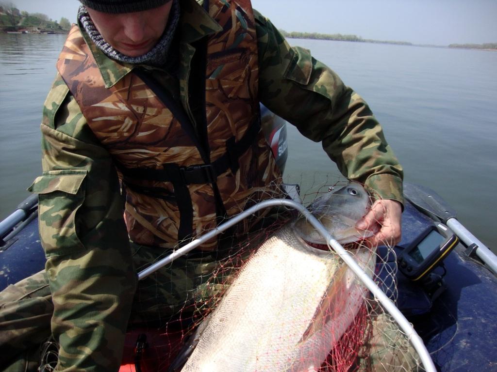 летняя рыбалка на волге туры
