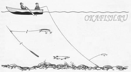 как ловить чехонь на тирольскую палочку