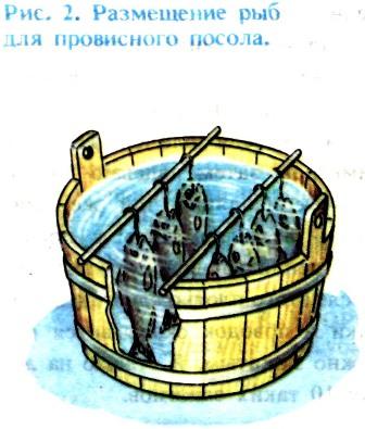 Вяление сушка и копчение рыбы без