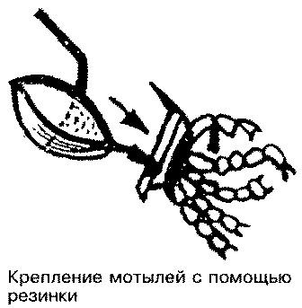 Как насадить мотыля.